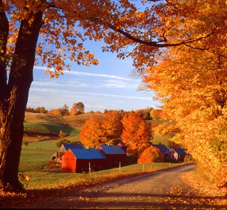 Autumn New England Autumn Posters Picture