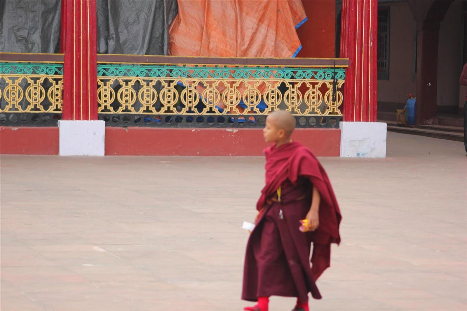 Rumtek Monastery Monk