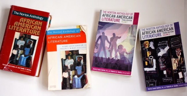 african american literature essay questions