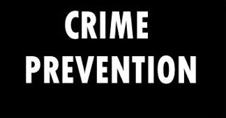 Essay on crime prevention programs