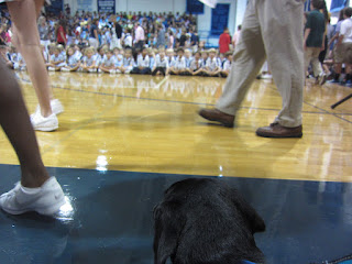 Photo of the back of Coach's head as he looks out onto the gym floor and the crowd filing in.