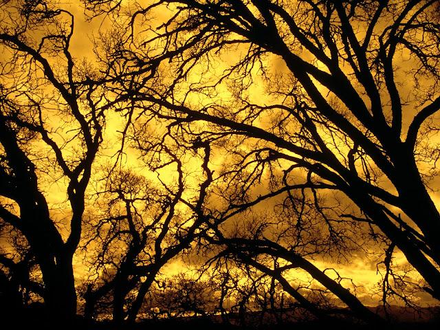Devil Sky, Mount diablo, california nature wallpaper