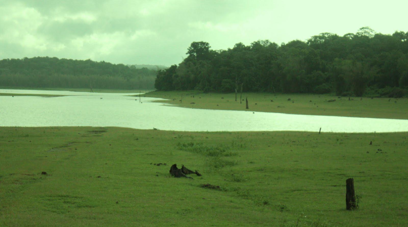 Simz corner trip to kabini river lodge in nagarhole for Wild river motor lodge