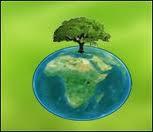 ENO (environment online)