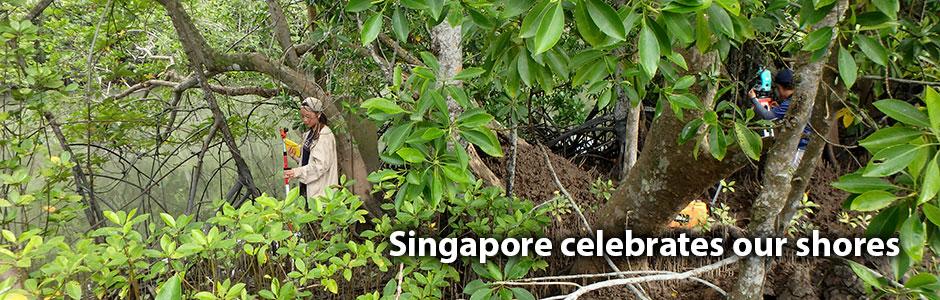 Singapore Celebrates our Shores 2018