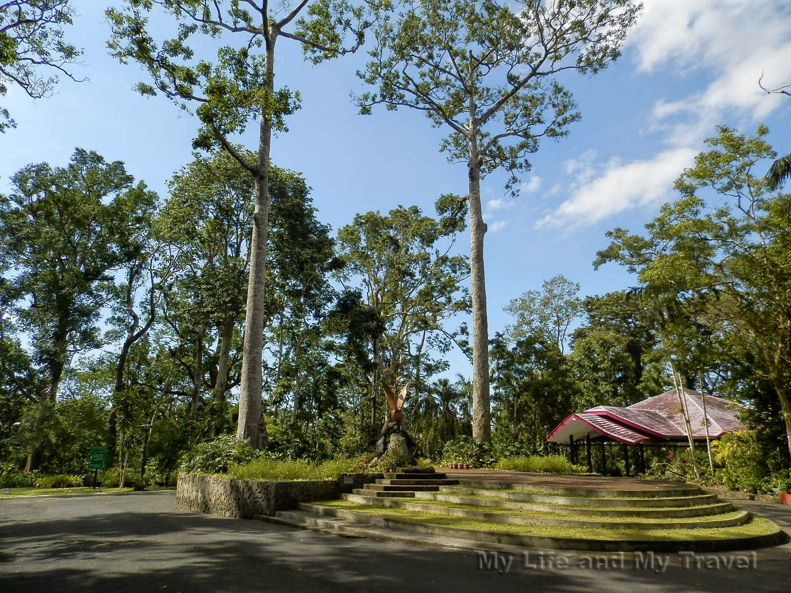 My life and my travel makiling botanic garden for What time does the botanical gardens close