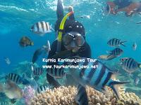 paket tour senorkeling 3h2m di Karimun Jawa