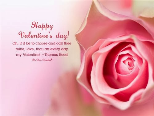 Best Funny Valentine's Day Quotes 2014