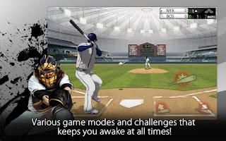 2013 Pro Baseball