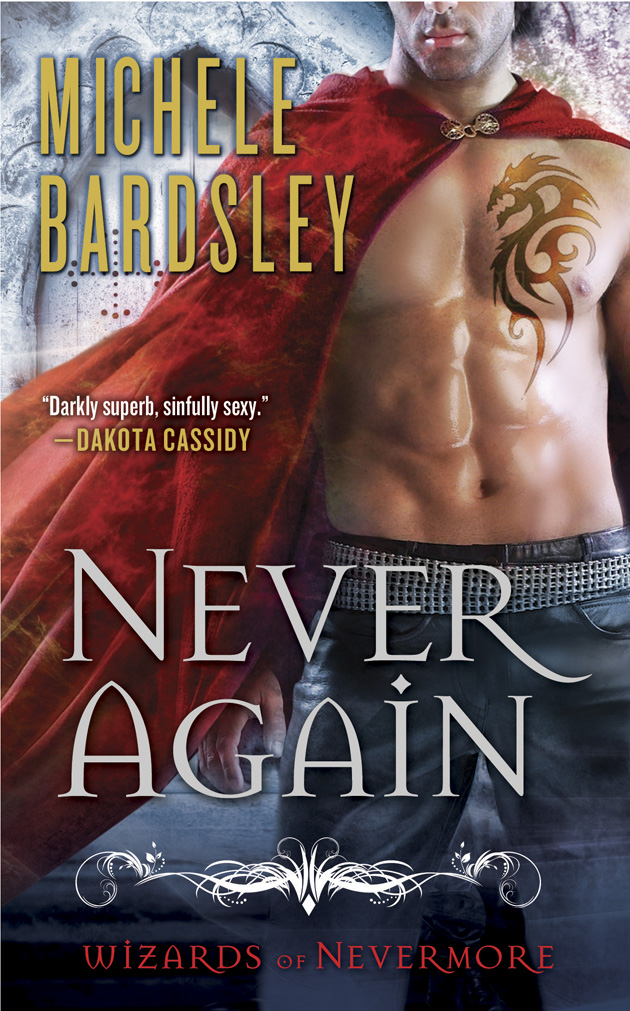 Never Again is Book 1 in The Wizards of Nevermore by Michele Bardsley.