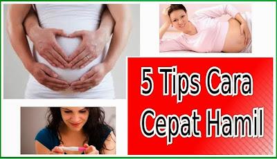 Ibu Hamil, Kesehatan Ibu Hamil, Nutrisi Ibu Hamil, Tips Ibu Hamil, Cara Cepat Hamil, Wanita Hamil