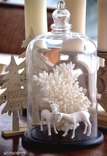 White coral bring the sea and a snowy feel to holiday