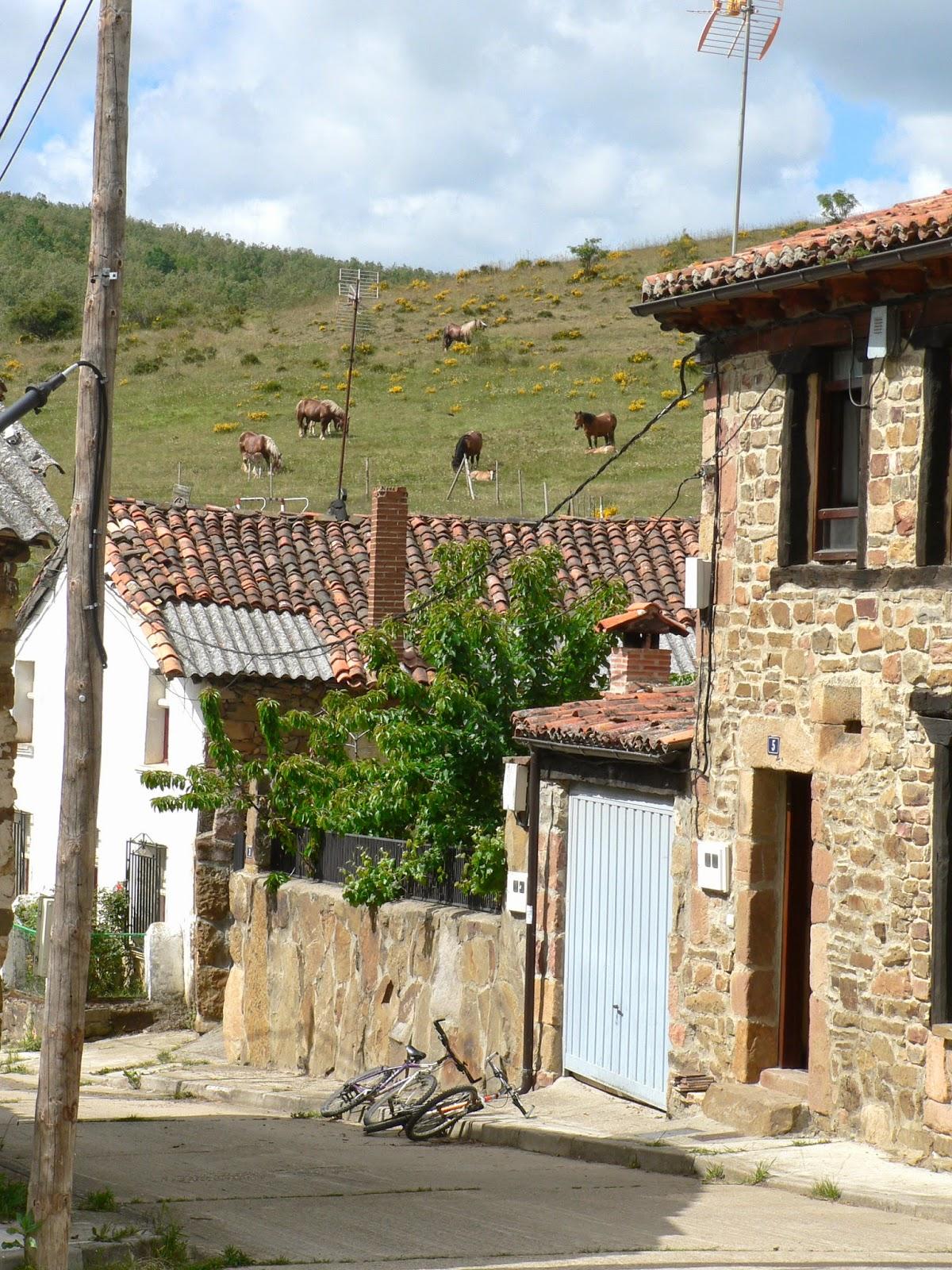 Casa la paleta del pintor monta a palentina llegando el verano - Casas rurales montana palentina ...