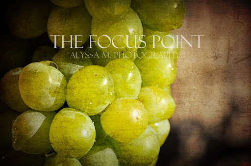 The Focus Point