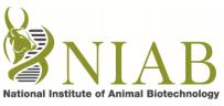 National Institute of Animal Biotechnology, NIAB Recruitment, Sarkari Naukri