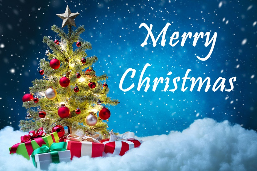 Beautiful Merry Christmas Tree Images Free Download 2016 - Merry Christmas 20...