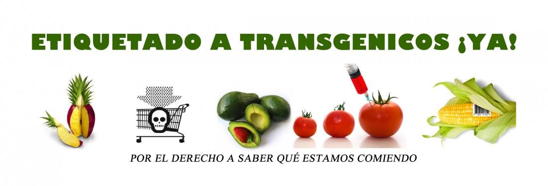 NO CONSUMA TRANSGENICOS