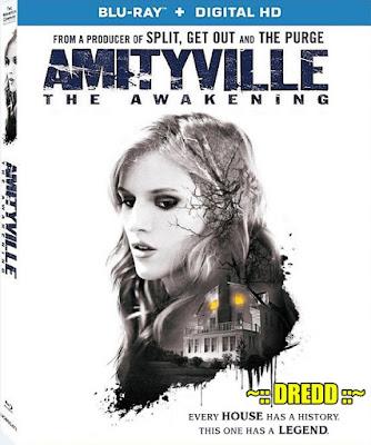 Amityville The Awakening 2017 Dual Audio BRRip 480p 300Mb x264