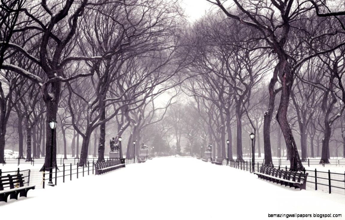 2094 Winter HD Wallpapers  Backgrounds   Wallpaper Abyss