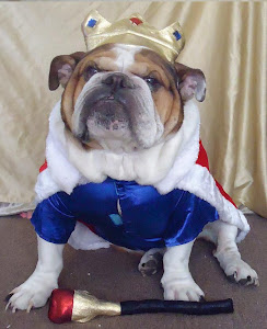 Jake (dressed as king!)
