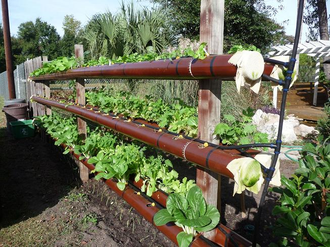 Pvc pipe garden cheap gardening ideas for Cheap vertical garden