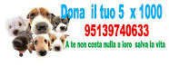 SOSTIENICI 95139740633