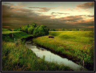 Attractive grass land
