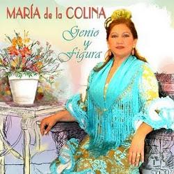 MARÍA DE LA COLINA EN CONCIERTO