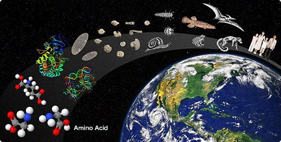 Resultado de imagen de Se hizo posible la Vida en el Universo