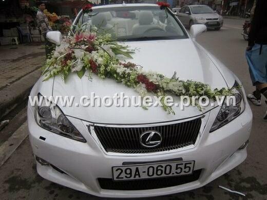 Cho thuê xe cưới lexus màu trắng IS250