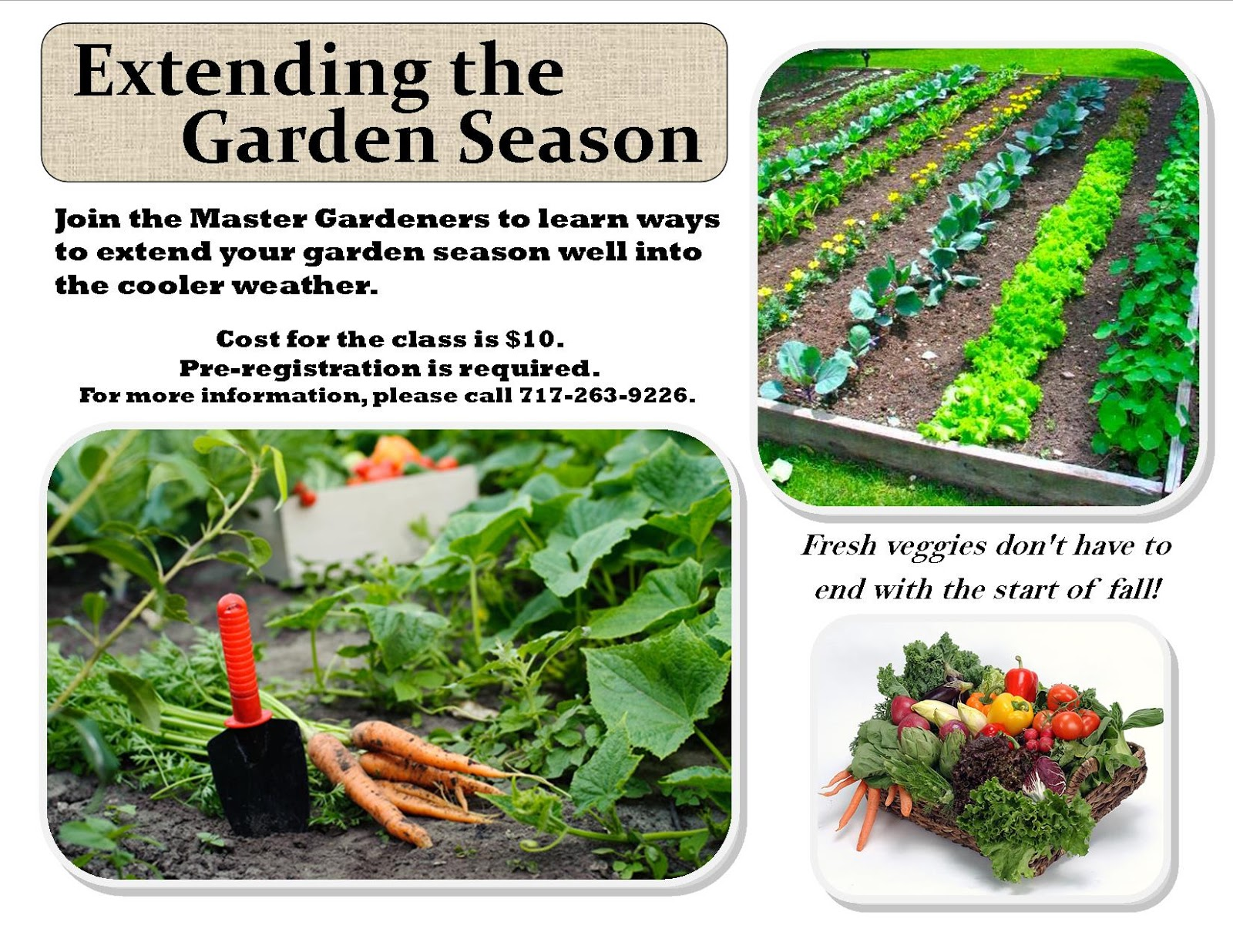 franklin county pa gardeners july and august mg workshops