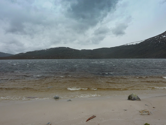 wind across lake will