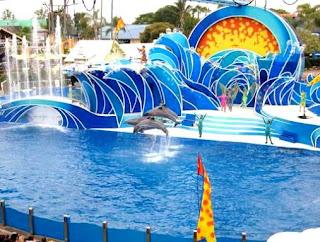 Sea World Orlando Florida (Best Honeymoon Destinations In USA) 3