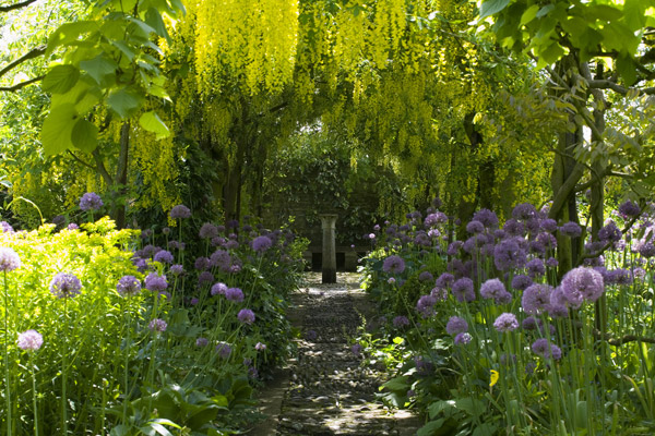 Laburnum Walk, Barnsley House, from the website, as seen on linenandlavender.net, http://www.linenandlavender.net/2013/05/the-english-garden.html