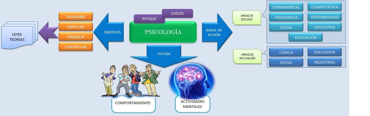 EL ESQUELETO HUMANO   Esquemas, diagramas, gráficos y mapas ...