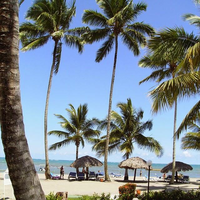 Grand Bahia Principe San Juan - Dominican - copyright Chrystal Scales