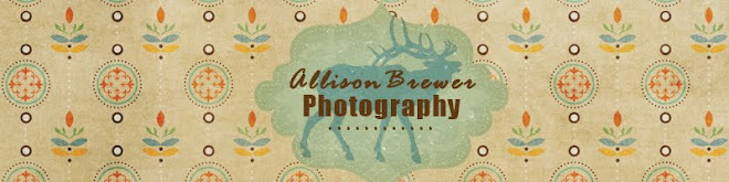 Allison Brewer Photography