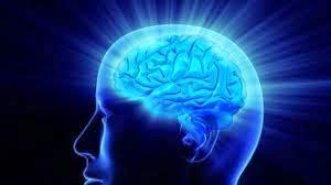 Otak kepala