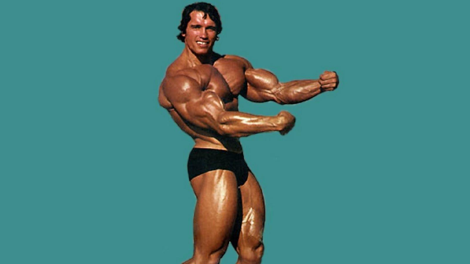 Arnold schwarzenegger bodybuilding pictures arnold schwarzenegger