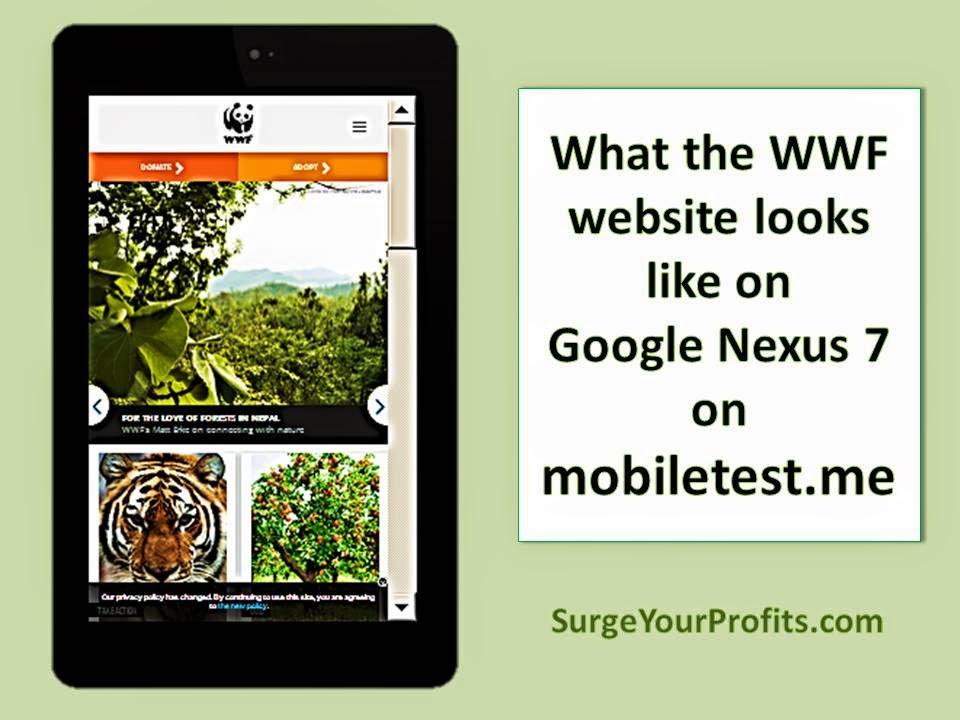 surgeyourprofits.com - Google Mobile Algorithm Update