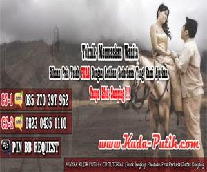 www.kuda-putih.com