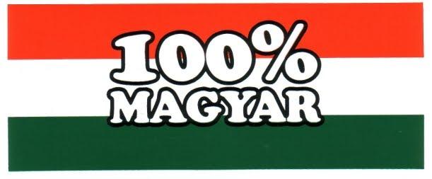 Ez a blog egy magyar ember alkotása