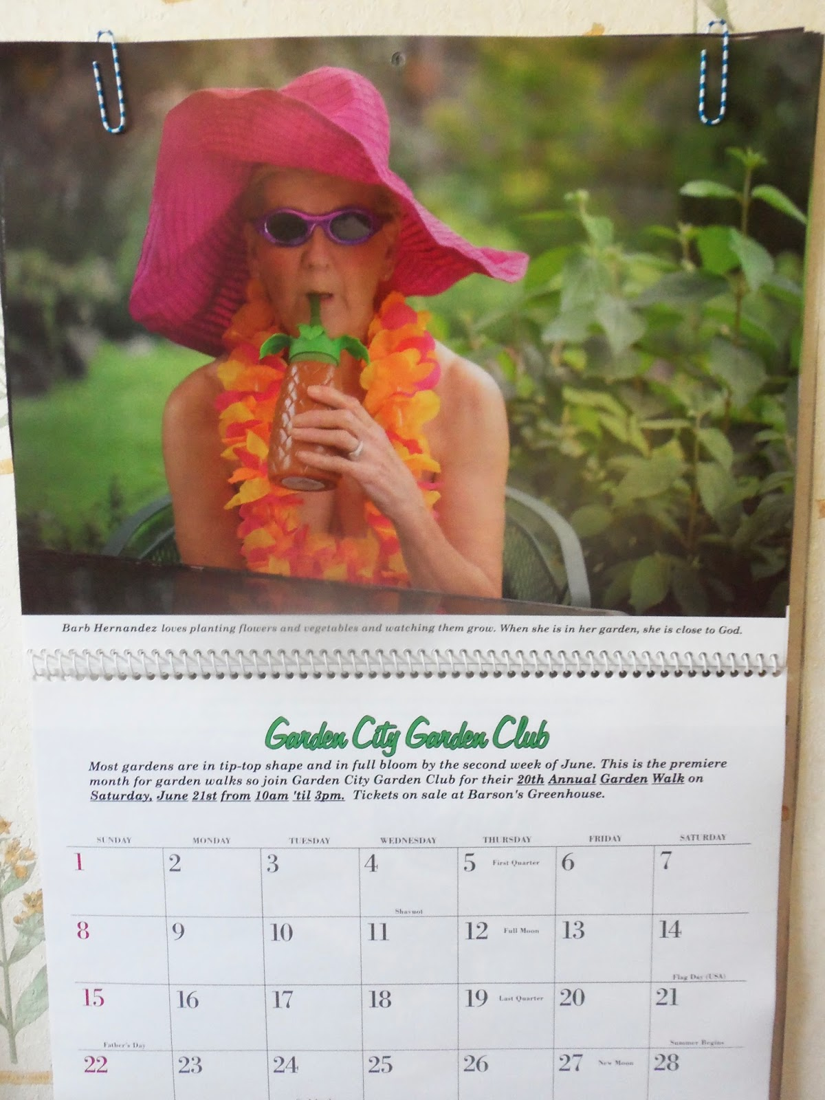 June Calendar Girl Read : A primitive plot june calendar girl