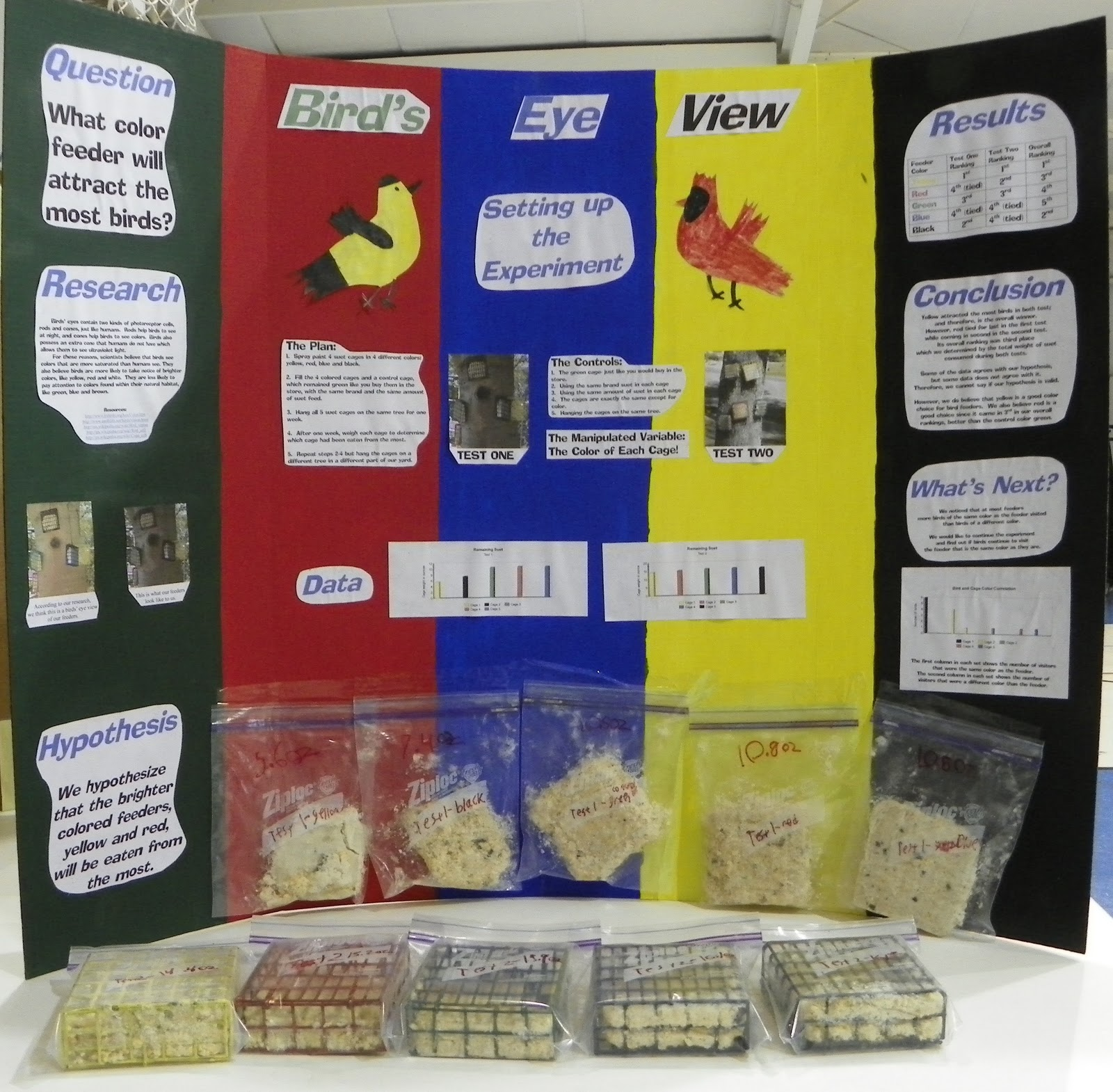 Home School Dawn Science Fair 2011