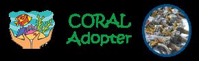 Coral Adopter at Belitung Adventure