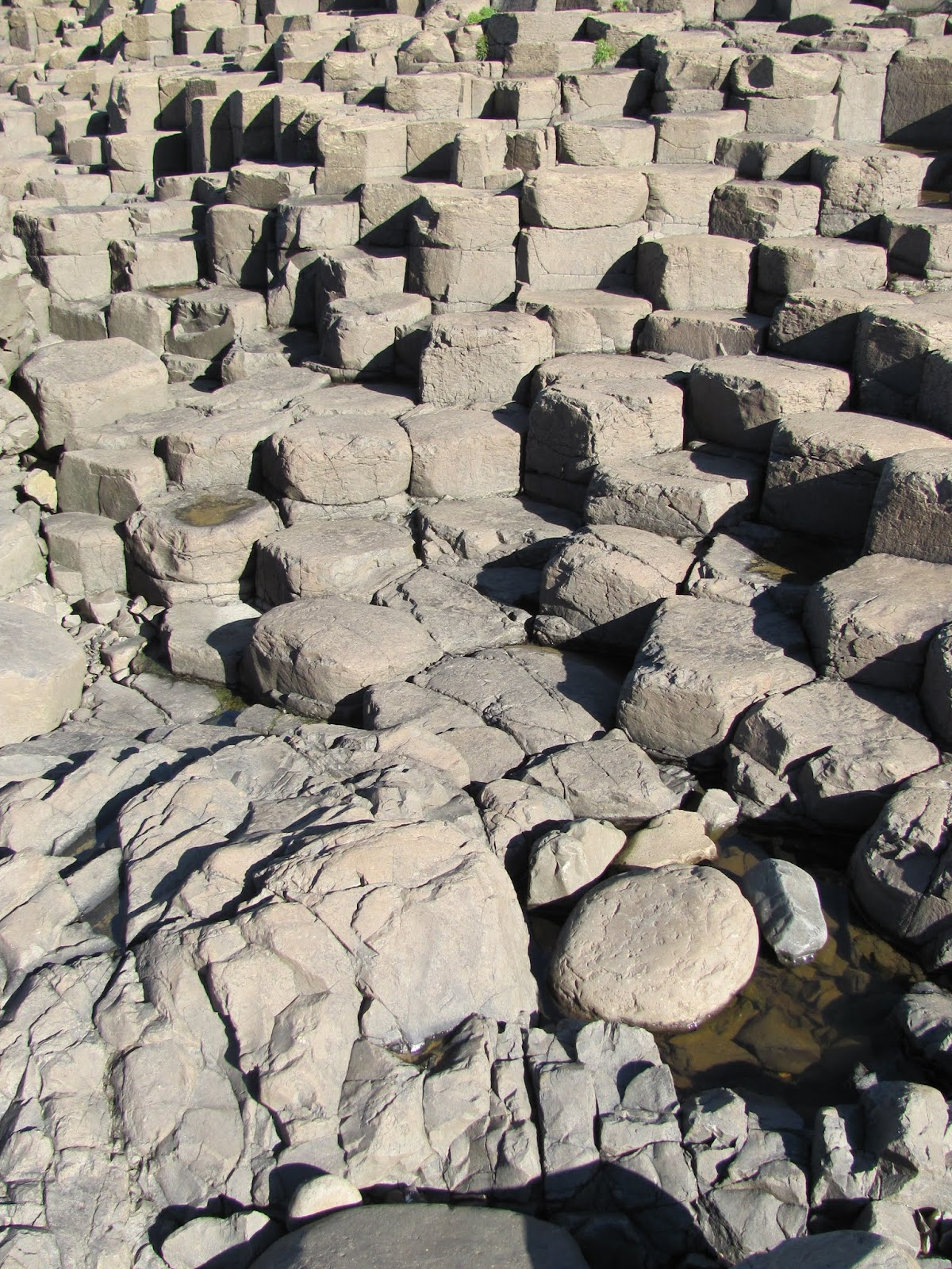 Giant's Causeway in the sun