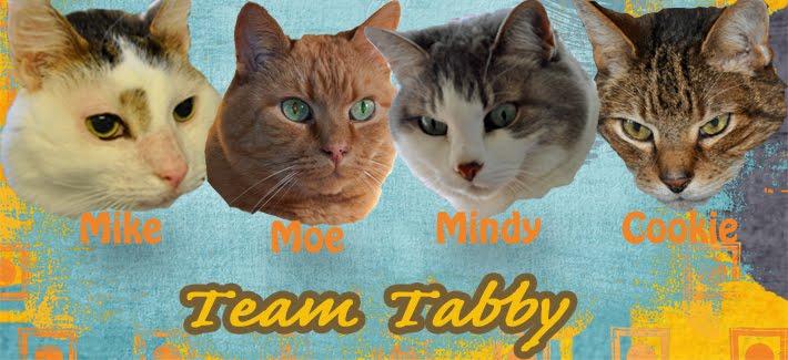 Team Tabby