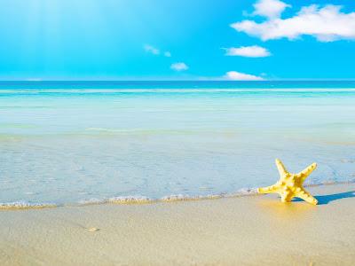 Nature white sand, starfish and blue sky