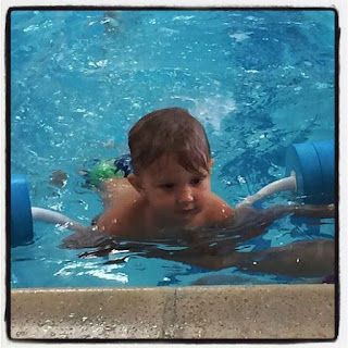 Reef Indy did well at his Noonan Swim Lesson