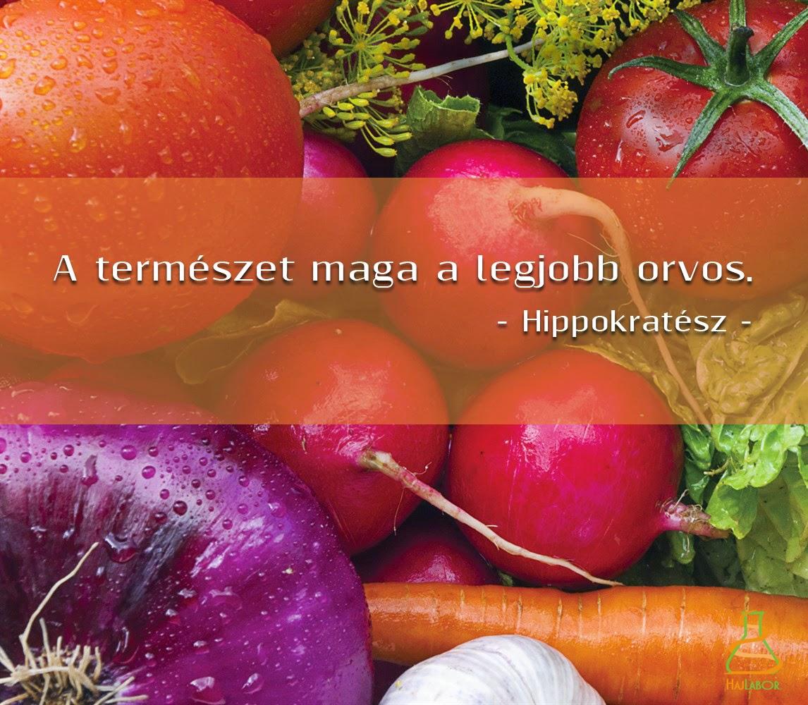 funkcionális táplálékok, egészségvédelem, Hajlabor, hajszövet analízis, Jónás Eszter